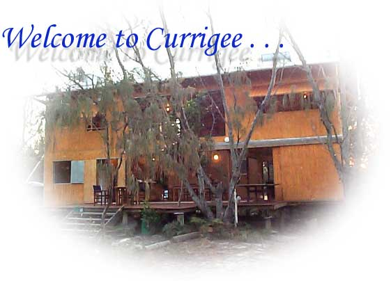 Welcome to Currigee
